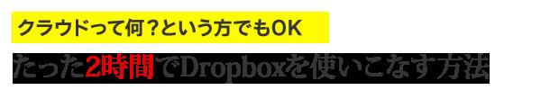 dropbox_catch